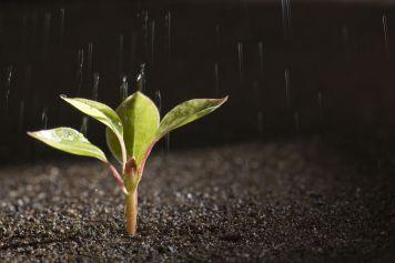crecimiento-personal-filosofia