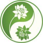 conciencia bambu tai chi