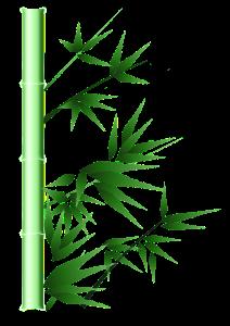 medita bambu san martin