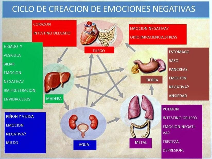 ciclo-creacion-emociones-negativas-mtc